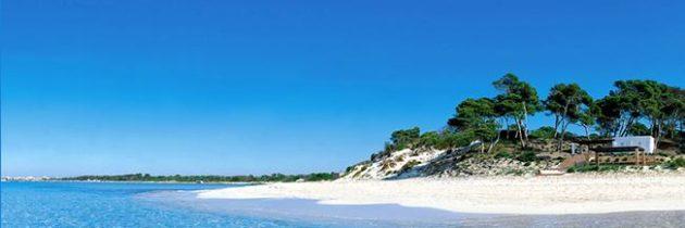 Allotjament ecològic, tendència del turisme sostenible